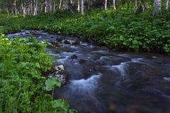 Piccolo fiume immagine stock