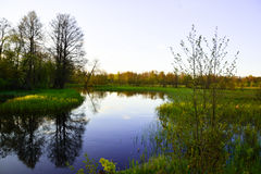 Piccolo fiume Immagini Stock