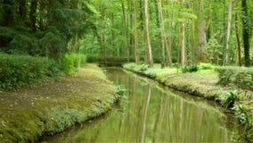 Piccolo fiume al giardino del castello di Canon, Francia stock footage