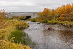 Piccolo fiume al plateau di Finnmark fotografia stock libera da diritti