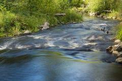Piccolo fiume con il riffle Fotografia Stock