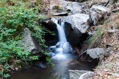 Piccolo fiume con la cascata sugli alberi di un fondo di verde Fotografia Stock