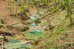 Piccolo fiume in Crimea, grande canyon, sorgente immagini stock libere da diritti