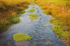 Piccolo fiume del villaggio Immagini Stock Libere da Diritti