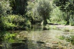 Piccolo fiume della montagna Fotografia Stock