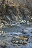 Piccolo fiume 1 della montagna Immagine Stock