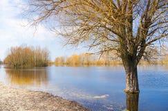 Piccolo fiume di Europa orientale Fotografia Stock Libera da Diritti