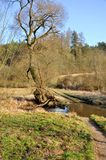 Piccolo fiume in Europa immagine stock