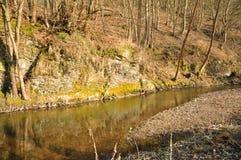 Piccolo fiume in Europa fotografia stock libera da diritti