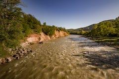 Piccolo fiume in foresta Fotografia Stock Libera da Diritti