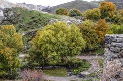 Piccolo fiume fra le noci nel paesino di montagna Fotografia Stock