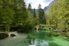 Piccolo fiume in natura del beatifull Fotografia Stock Libera da Diritti