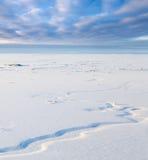Piccolo fiume nella vista normale e superiore nevosa Immagini Stock