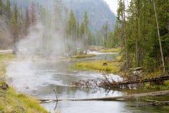 Piccolo fiume in Yellowstone fotografie stock libere da diritti