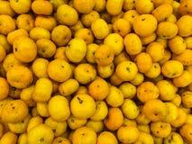Piccolo fondo della frutta delle arance Fotografie Stock