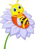 Piccolo fumetto dell'ape che riposa sul grande fiore Fotografie Stock Libere da Diritti