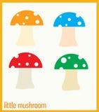 Piccolo fungo Fotografia Stock
