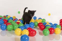 Piccolo gattino nero che gioca con le sfere variopinte Immagini Stock Libere da Diritti