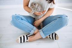 Piccolo gatto e ragazza scozzesi che si siedono nella stanza Fotografie Stock
