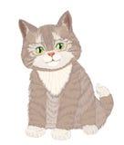 Piccolo gatto lanuginoso sveglio su bianco royalty illustrazione gratis