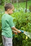 Piccolo giardiniere sul lavoro Fotografie Stock
