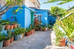 Piccolo giardino privato con i fiori in vasi Fotografie Stock