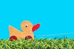 Piccolo giocattolo dell'anatra su erba verde Immagine Stock