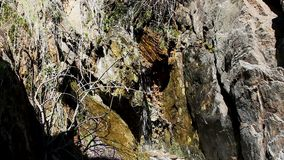 Piccolo gocciolamento di acqua che cade in mezzo delle rocce e delle piante video d archivio