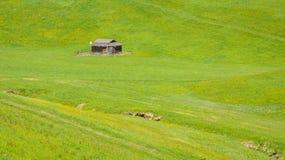 Piccolo granaio nel prato verde delle montagne di Trentino Alto Adige, Tirolo del sud, Italia del Nord immagini stock