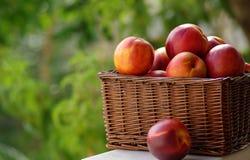 Piccolo hamper di frutta Fotografie Stock Libere da Diritti