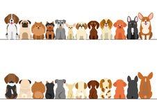 Piccolo insieme del confine dei cani illustrazione di stock