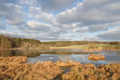 Piccolo lago in Baviera, Germania Fotografia Stock Libera da Diritti