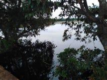 Piccolo lago circondato dagli alberi circondare scuro del posto dell'ombra immagini stock libere da diritti