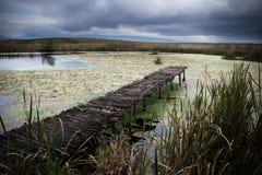 Piccolo lago con il pilastro Fotografie Stock