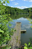 Piccolo lago con il sentiero costiero vicino alla foresta in primavera Fotografia Stock Libera da Diritti