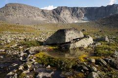 Piccolo lago con muschio nelle montagne Fotografia Stock
