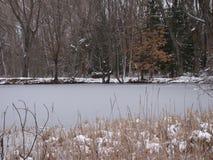 Piccolo lago congelato Fotografia Stock