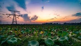 Piccolo lago del villaggio della Cina Schang-Hai immagini stock