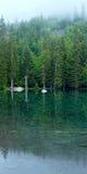 Piccolo lago della foresta della montagna. Fotografie Stock