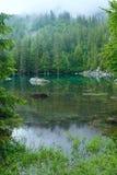 Piccolo lago della foresta della montagna. Fotografia Stock Libera da Diritti