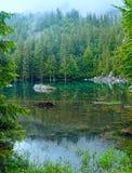 Piccolo lago della foresta della montagna Immagini Stock Libere da Diritti