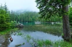 Piccolo lago della foresta della montagna. Fotografia Stock