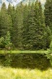 Piccolo lago della foresta in montagne di Alpen, posto per rilassamento e t Fotografia Stock Libera da Diritti