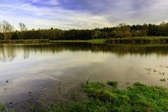 Piccolo lago in Lelystad Immagine Stock