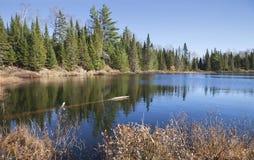 Piccolo lago nel Minnesota del Nord con bella acqua blu e la p fotografie stock