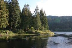 Piccolo lago nel nord-ovest Fotografia Stock