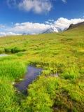 Piccolo lago su verde Fotografia Stock