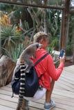 Piccolo mammifero animale divertente Africa delle lemure con la gente fotografia stock libera da diritti
