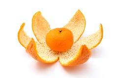 Piccolo mandarino sulla buccia Fotografia Stock