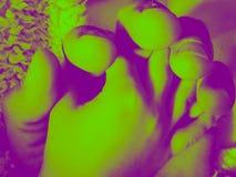 Piccolo mano in filtro da tono di duo della grande mano immagine stock